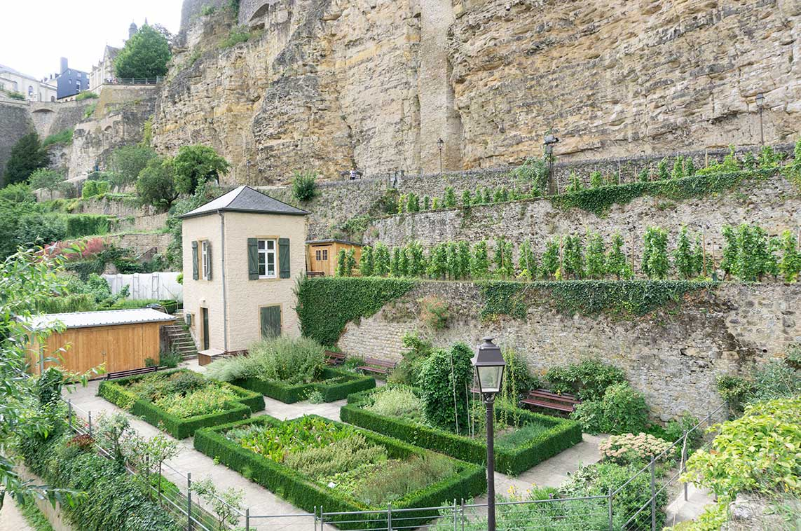 A small garden at the bottom of the casemates in Luxembourg City.