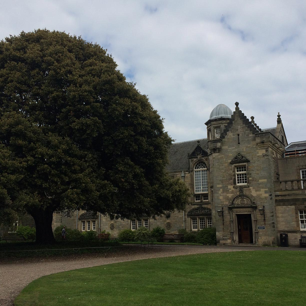 An old building and a tree in St. Andrews, Scotland.